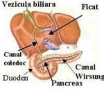 ficat vezicula biliara pietre fiere