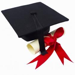 cursurle mele certificate karanna