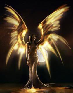 angel 29