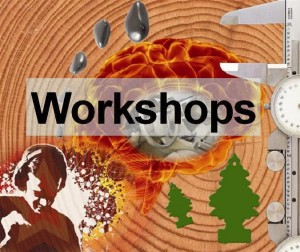 workshops-picture1