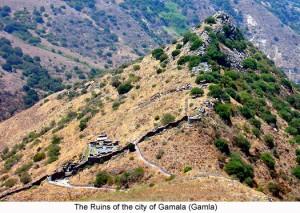 Ruins_of_the_city_of_Gamla_Gamala_525